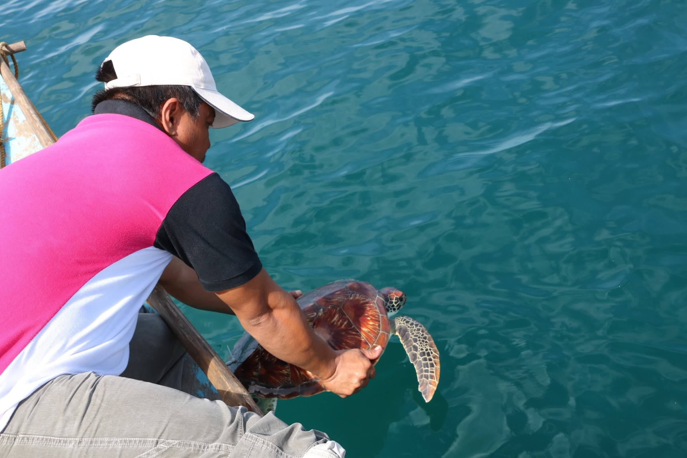 RELEASING THE SEA TURTLE TO ITS OWN ABODE